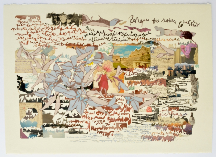 mapa-postal
