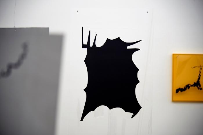 manchas na galeria 1